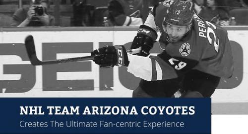 Tegrita Aides Arizona Coyotes' Fan Experience