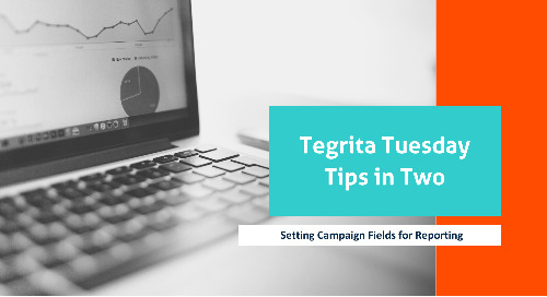 Tegrita Tuesday Tips In Two - Setting Campaign Fields for Reporting
