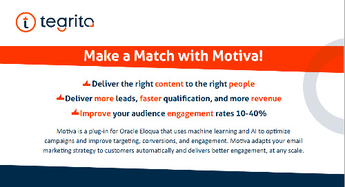 INFOGRAPHIC: Segmentation and Targeting: Make a Match with Motiva