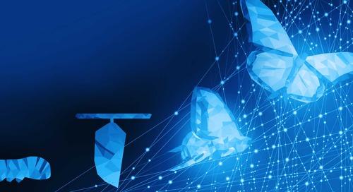 Transforming Workflows: How to Successfully Adopt BIM