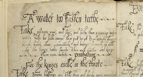 威利数字档案馆新手:使用自动文本识别功能搜索和浏览七个世纪的手稿