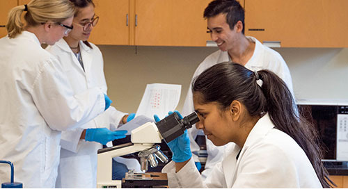Critical Thinking Skills: How to Get Your Students to Think Like a Biochemist
