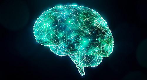 为什么心理学导论生现在比以往任何时候都更需要在网上学习