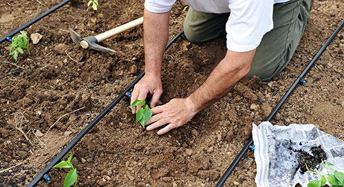 可持续农业节水