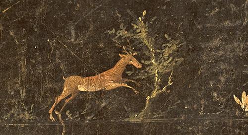人类世的艺术:艺术和可持续发展有什么共同点?