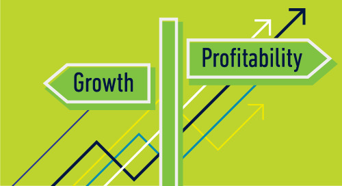 Should Owners Focus on Profitability or Growth?