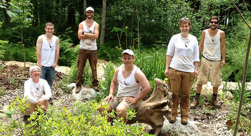 Sowing Success: Helping Nature Heal
