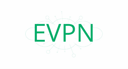 EVPN on the host for multi-tenancy