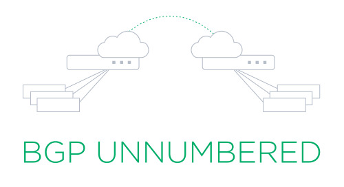 BGP unnumbered overview