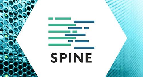 DCspine case study