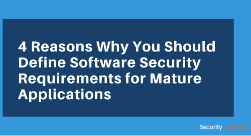 4 Reasons Why You Should Define Software Security Requirements for Mature Applications