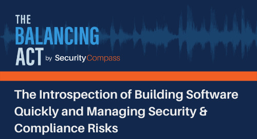 The Introspection of Building Software Quickly and Managing Security & Compliance Risks