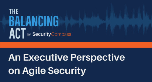An Executive Perspective on Agile Security