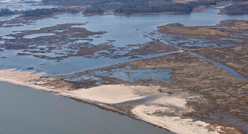 Project: Prime Hook National Wildlife Refuge Restoration