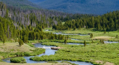 Brochure: Designing Natural River Systems