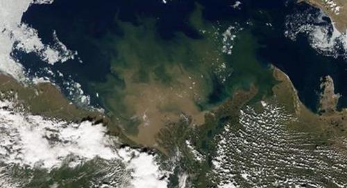 Project: Marine Arctic Ecosystem Study