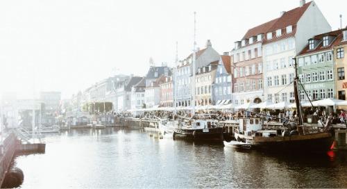2019 Denmark RepTrak