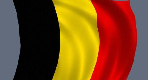 Retailer Colruyt Tops Belgium RepTrak Ranking
