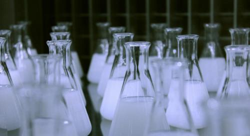 Q&A: The Science Behind RepTrak
