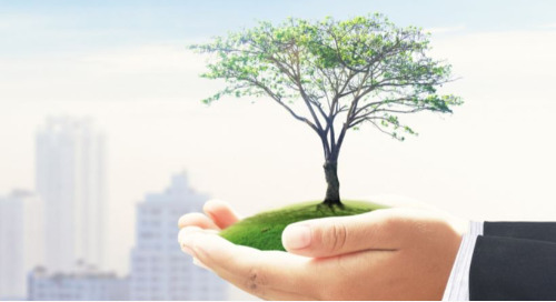 How to Build Credibility Through Corporate Responsibility