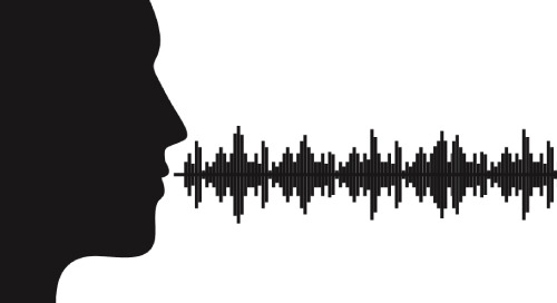 Navigating Analytics with Voice