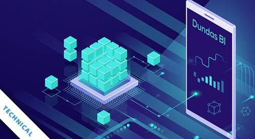 3 Data Storage Techniques in Dundas BI