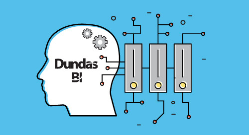 3 Data Storage Techniques in Dundas BI