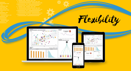Why Does Flexibility Matter in a Business Intelligence Tool?