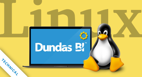 Installing Dundas BI on Linux