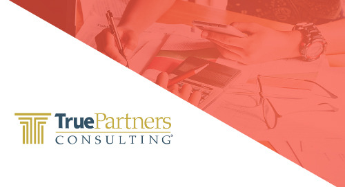 True Partners Consulting | BigTime Case Study