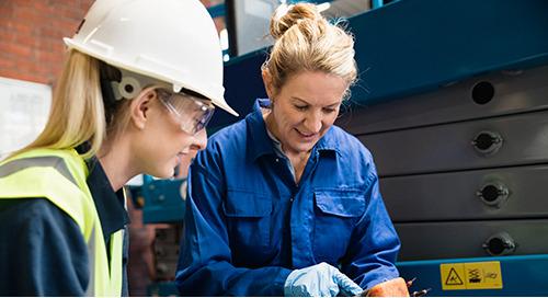 Meet the Apprenticeships Team - Sue Donoghue