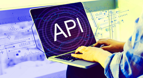 API Security: Tips for Protecting Your Salesforce Data from API Breaches