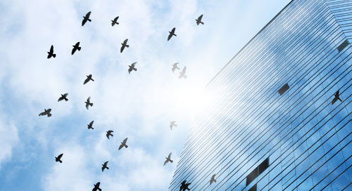 Ensuring Clear Skies for Your Cloud Migration