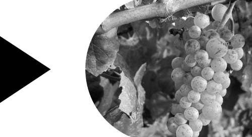DXC Wine Management for Microsoft Dynamics 365 Business Central