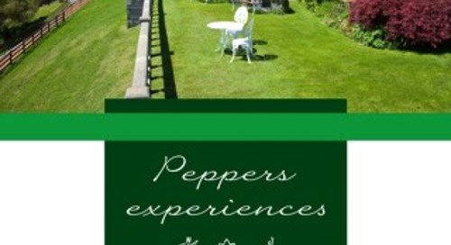 Peppers on the Point Experiences Brochure