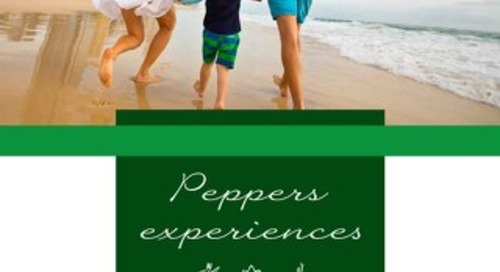 Soul Surfers Paradise Experiences Brochure
