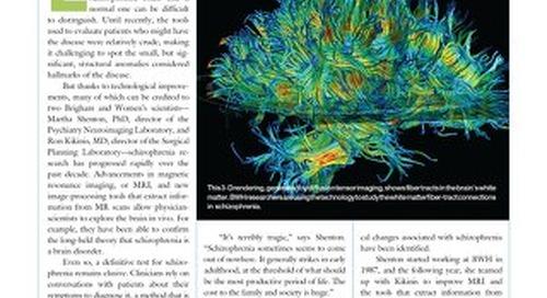 BWH Magazine (Winter 2007) - Seeing Schizophrenia's Subtleties