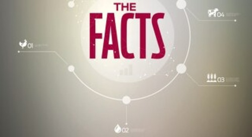 TheFacts