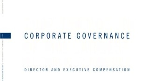 2007 Director & Executive Compensation Survey