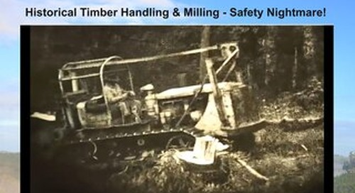 Timber & Forestry E News Issue 351