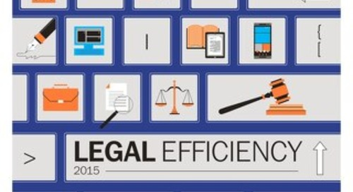 Legal Efficiency