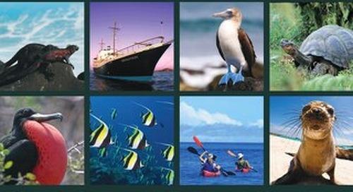 Galapagos 2019