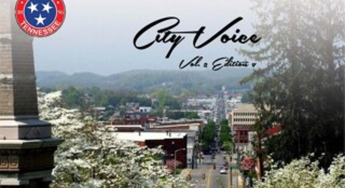 City Voice Vol. 2 Edition 4