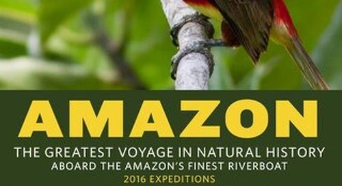 Amazon 2015-2016