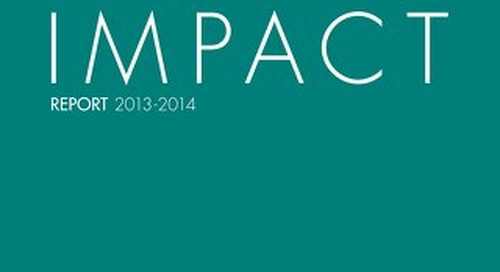 2013-14 Endeavor Miami Impact Report
