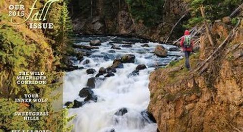 Distinctly Montana Fall 2015