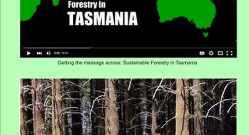 Timber & Forestry E News Issue 385
