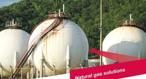 z7199BR - Natural Gas brochure
