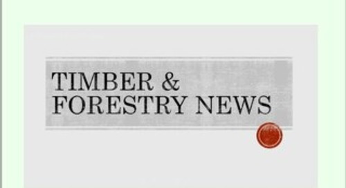Timber & Forestry E News Issue 393