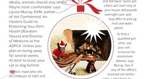 Critter Care During The Holidays